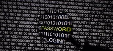 Foto: La NSA y su homólogo británico descifran información confidencial en Internet (Reuters)