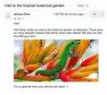 Gmail permite mostrar las imágenes adjuntas en un email directamente