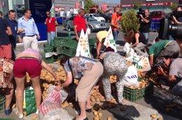 Foto: Protestan por el veto ruso tirando toneladas de patatas (UPA/EUROPA PRESS)