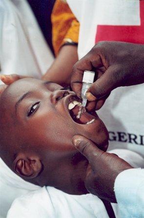 Foto: El impacto de ébola hará que la atención sanitaria a patologías endémicas de África como la malaria se deteriore (CRUZ ROJA)