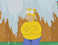 Homer Simpson y su Ice Bucket Challenge