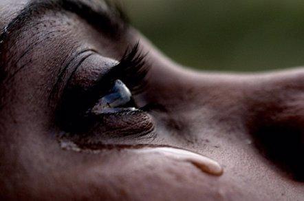 Foto: Más cerca de borrar los recuerdos traumáticos (FLICKR/ANIL KUMAR)