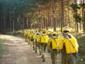 Foto: Las causas del menor número de incendios este verano (MAGRAMA)