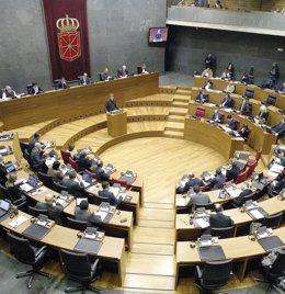 Foto: El Parlamento foral acoge el día 10 el pleno sobre autogobierno (EP/PARLAMENTO)