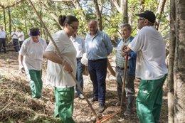 Foto: El Gobierno contrata a 13 desempleados para obras de regeneración ambiental (GOBIERNO)