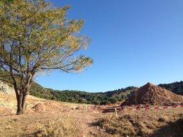 Foto: Un grupo de arqueólogos sondeará la posible fosa de Lorca en Alfacar (EUROPA PRESS)