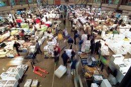 Foto: Mercabarna busca negocio en Alemnania por su 89% de importación (MERCABARNA)