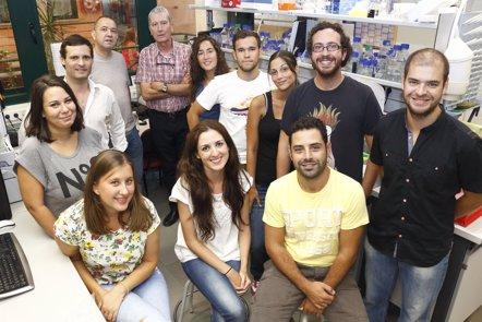 Foto: Patentan un compuesto para generar células zombis (EUROPA PRESS)