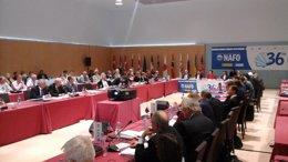 Foto: El Gobierno confía en que NAFO mantenga los TAC (EUROPA PRESS)
