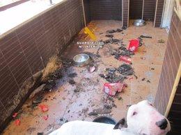Foto: Localizan a una menor en estado de abandono en Estepona (EUROPA PRESS)