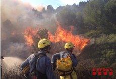 Foto: Estabilitzat l'incendi de Roses (Girona) després de cremar 35 hectàrees (BOMBERS)