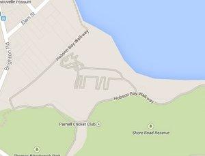 El gato de Google Maps en Auckland