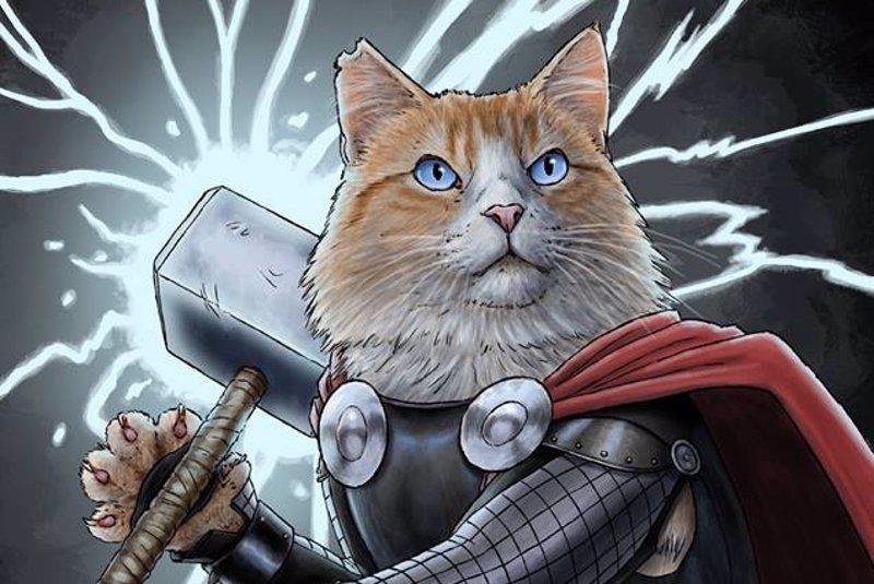 Cat S Super Su