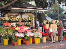 Foto: El clavel y la rosa, las flores más vendidas de cara a la festividad de Todos los Santos (EUROPA PRESS)