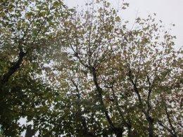 Foto: Un octubre veraniego se despide dando paso al tiempo otoñal (EUROPA PRESS)