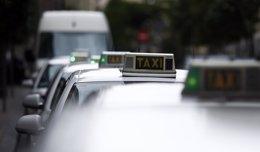 Foto: Tele Taxi San Fermín adquiere la aplicación 'Pidetaxi' para móviles (EUROPA PRESS)