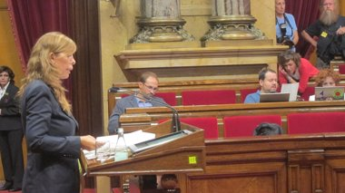 Foto: Camacho critica a quienes se oponen a la querella a Mas (Europa Press)