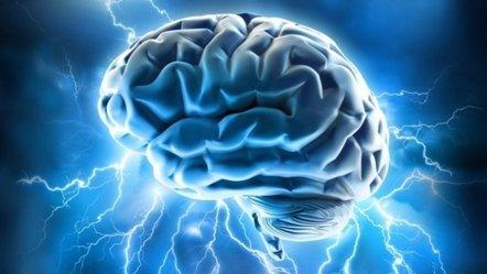 Foto: Identifican el punto débil del cerebro para el Alzheimer y la esquizofrenia (FLICKR/ALLAN AJIFO)