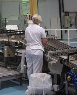 Foto: La facturación de la industria subió un 0,7% en 2013 en Extremadura (EUROPA PRESS)