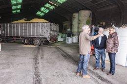 Foto: Una empresa cántabra comienza a fabricar 'kellogs' para el ganado (GOBIERNO)