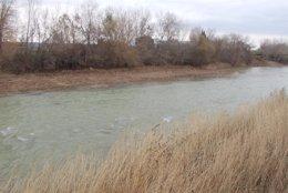 Foto: La CHE finaliza el acondicionamiento del río Alcanadre, en Ballobar (CHE)