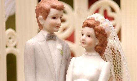 Foto: El matrimonio tiene efectos positivos sobre la salud (G. L. KOHUTH/MICHIGAN STATE UNIVERSITY)