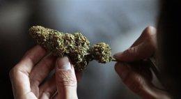 Foto: La llei que llegaliza la marihuana en Washington DC entre en vigor esti xueves (EUROPA PRESS)