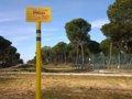Foto: WWF reclama al Ministerio estudios sísmicos en el proyecto de almacén de gas en Doñana (JUANJO CARMONA, WWF ESPAÑA)