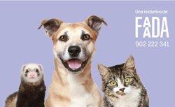 Foto: Arrenca una nova campanya d'identificació i esterilització d'animals de companyia (FAADA)