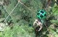 Así se ve la selva amazónica desde Google Street View y desde una tirolina