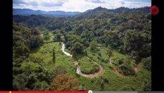 Foto: Descobreixen una ciutat perduda a la selva d'Hondures (YOUTUBE)