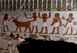 Foto: Descubren la tumba de un jerarca egipcio de la XVIII Dinastia (MINISTERIO DE ANTIGÜEDADES DE EGIPTO)