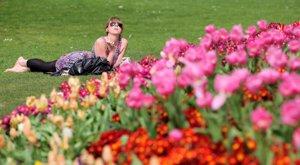 Foto: 7 cosas importantes que debes saber de la primavera (GETTY)