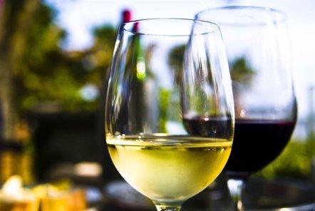 Foto: ¿Qué vino te gusta más? Pregúntale a tu cerebro (BCBL)