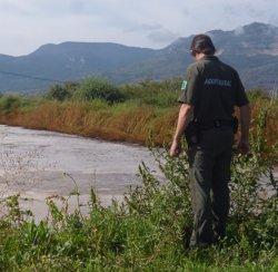 Foto: Agro.- La Generalitat destina més de 3,3 milions a ajudes per a la gestió de purins (GENCAT)