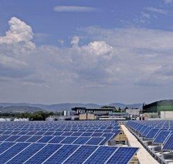 Foto: Bodegas Torres, premiada per la implementació d'energies renovables (BODEGAS TORRES)