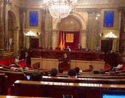 Foto: El PP critica la proliferació de