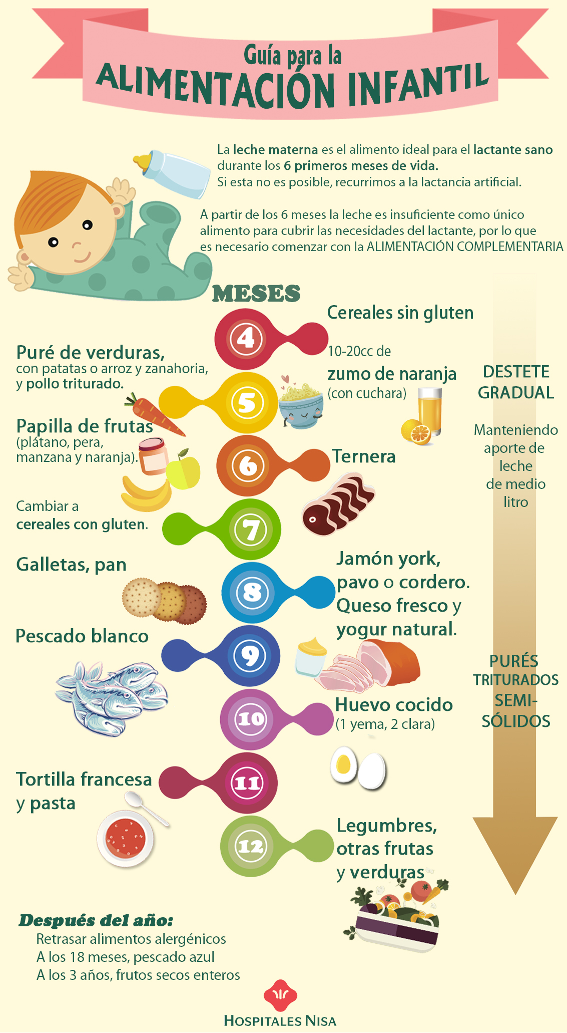 Tabla de introducci n de alimentos en el beb - Comidas para bebes de 5 a 6 meses ...