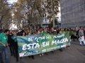 CIENTOS DE PERSONAS PARTICIPAN EN LA MARCHA POR EL CLIMA EN PALMA