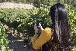 Espanya suma 60,8 milions de turistes internacionals fins a l'octubre, un 4,42% més (MATARROMERA.)