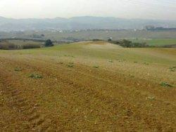 El SOC i Unió de Pagesos promouran la inserció laboral en el sector agrari (UNIÓ DE PAGESOS)