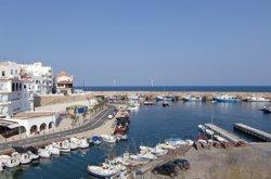 Restauren el llac Tort de l'Ametlla de Mar per reintroduir el samaruc (NORMAWIND/IREC)