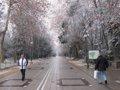 """Este marzo ha sido """"muy frío"""" y un 31% más lluvioso de lo normal"""