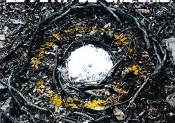 El Petit de Cal Eril passejarà el seu nou àlbum 'La força' amb una gira aquesta primavera (EL PETIT DE CAL ERIL)