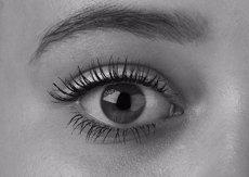 El diagnòstic a través de la retina prediu l'evolució de l'Esclerosi Múltiple (PIXABAY/TKREPELOVA0)