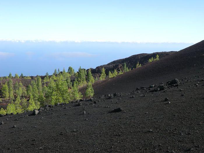 Arenas Negras, Tenerife