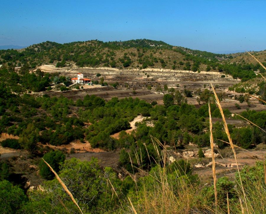 Cañada del Pino