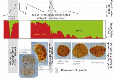 Un desastre ecológico asoló la Tierra hace 250 millones de años (UZH)