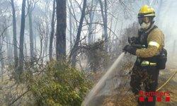 L'incendi de Blanes ha cremat 30 hectàrees i ha obligat a desallotjar urbanitzacions (BOMBERS DE LA GENERALITAT)
