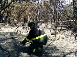 Una negligència, principal hipòtesi del foc de Blanes (Girona) (EUROPA PRESS)